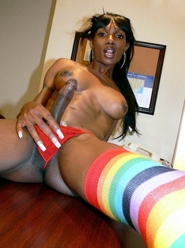 Cheerful ebony shemale with long firm..